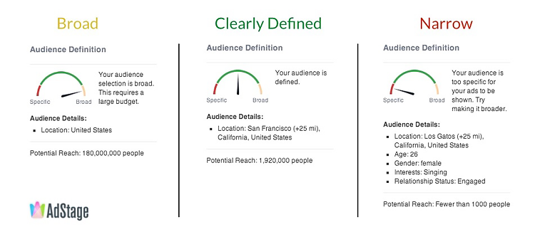 dashboard showing Facebook advertising audience