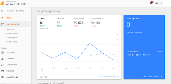 google analytics website insights