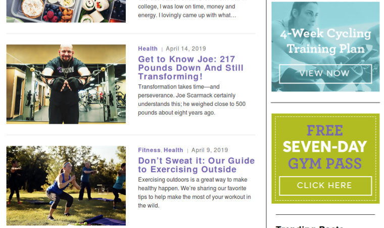 anytime fitness blog lead magnet examples